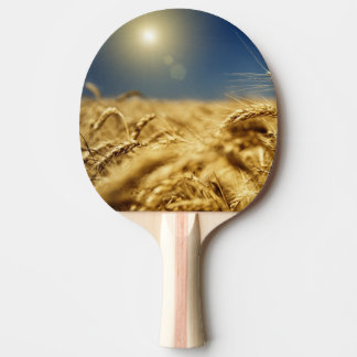 Gold wheat and blue sky with sun ping pong paddle