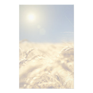 Gold wheat and blue sky with sun stationery