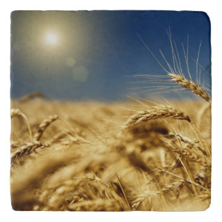 Gold wheat and blue sky with sun trivet