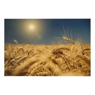Gold wheat and blue sky with sun wood wall decor