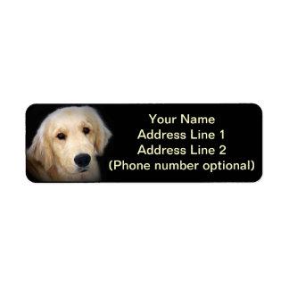 Golden Address Sticker