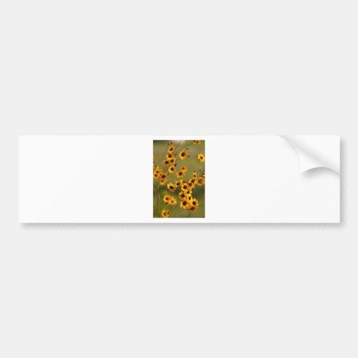 Golden Alabama Coreopsis tinctoria Wildflowers Bumper Stickers