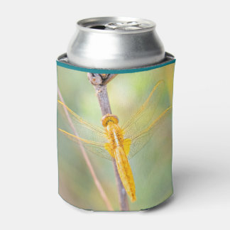 Golden and yellow dragonfly