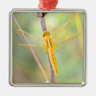 Golden and Yellow Dragonfly Christmas Ornament