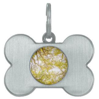 Golden Aspen Forest Canopy Pet ID Tags
