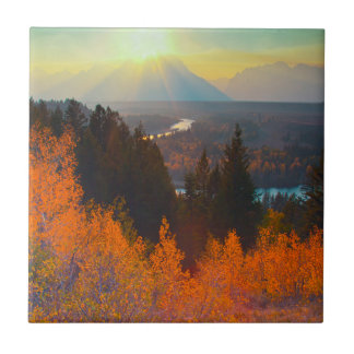 Golden Aspens Above Snake River At Sunset Tile