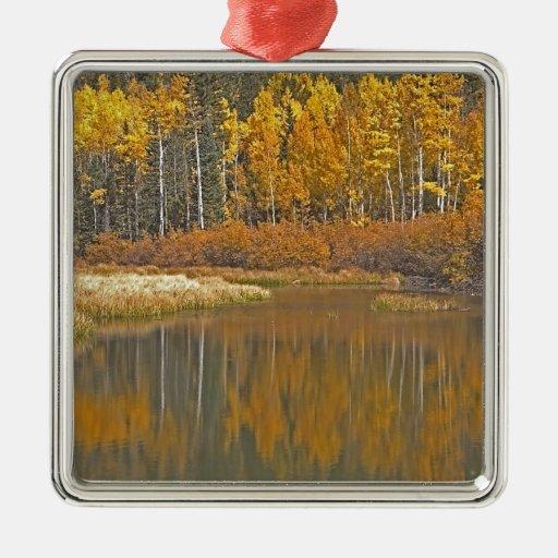 Golden Aspens Reflecting in Beaver Pond Christmas Tree Ornament