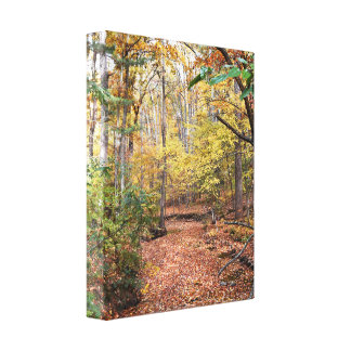 Golden Autumn Stream Wrapped Canvas Gallery Wrap Canvas