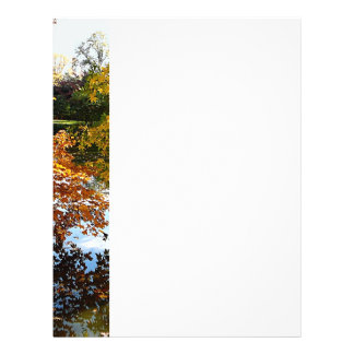 Golden Autumn Trees Full Color Flyer