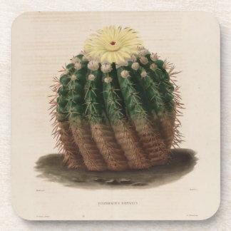 Golden Barrel Cactus Coaster