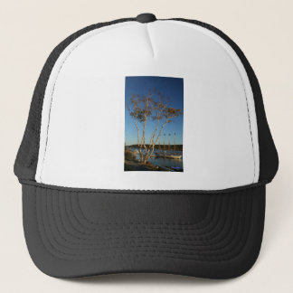 Golden Birch with ship Trucker Hat