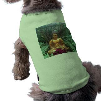 Golden buddha pet clothing