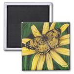 Golden Butterfly Magnet
