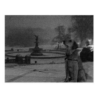 Golden by Bethesda Fountain-Central Park Postcard