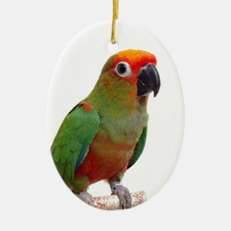Golden-capped conure christmas ornament