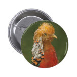 Golden/Chinese Pheasant Button Badge
