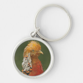Golden/Chinese Pheasant Keyring/Keychain Silver-Colored Round Key Ring