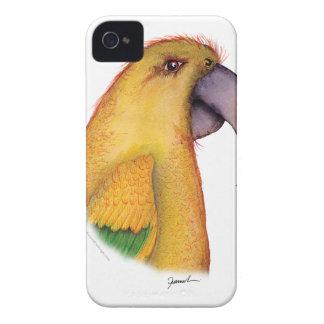 golden conure parrot, tony fernandes iPhone 4 Case-Mate case