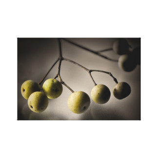 Golden Crabapples on Glass Gallery Wrap Canvas
