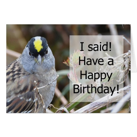 Golden Crowned Sparrow Framable Birthday Card