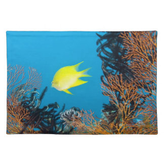 Golden Damselfish (Amblyglyphidodon aureus) Placemat