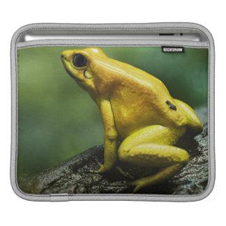 Golden Dart Frog iPad Sleeve