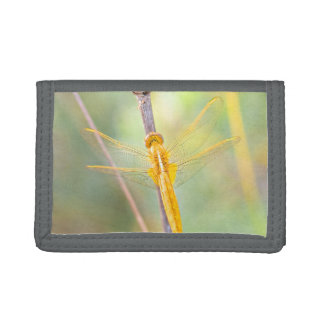 Golden Delicious dragonfly Tri-fold Wallet