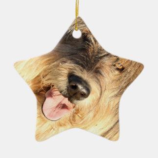 Golden Dog Ceramic Star Decoration