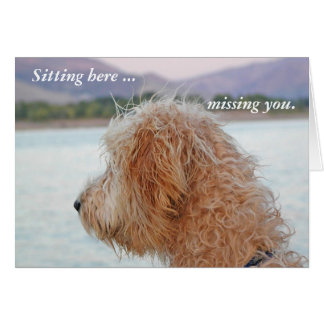 Golden Doodle Card--Missing You Notecard