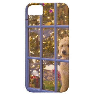 Golden Doodle puppy looking out glass door with iPhone 5 Cover