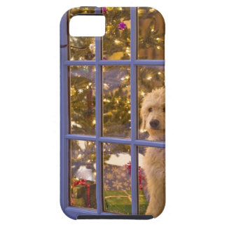 Golden Doodle puppy looking out glass door with iPhone 5 Covers