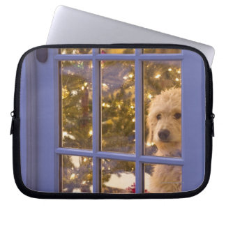 Golden Doodle puppy looking out glass door with Laptop Sleeve
