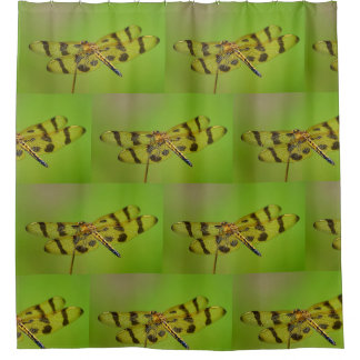 Golden Dragonfly Shower Curtain