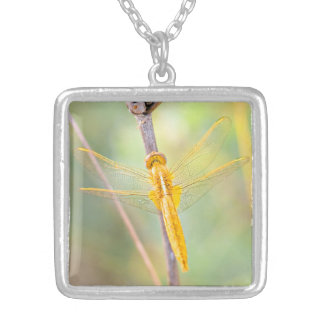 Golden dragonfly silver plated necklace