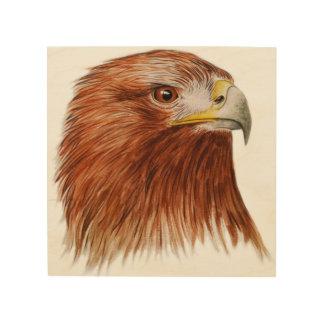 Golden Eagle 2011 Wood Print