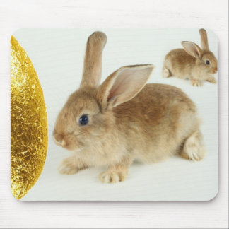 Golden Easter Egg and Bunnies Mouse Pad