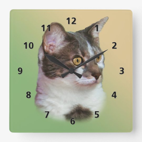 Golden-eyed Cat Square Wall Clock