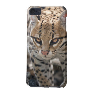 Golden Eyes iPod Touch Case