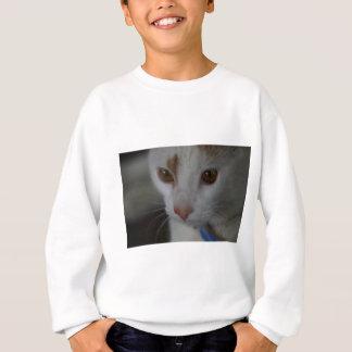 Golden Eyes Sweatshirt