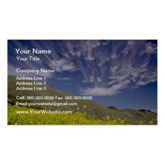 Golden Gate Nat'l Recreation Area - Marin Headland Pack Of Standard Business Cards
