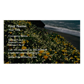 Golden Gate Nat'l Recreation Area - Wild Flowers P Pack Of Standard Business Cards