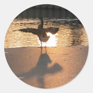Golden goose round stickers