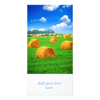 Golden hay bales in green field photo card