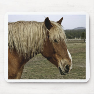 Golden horse mouse pad
