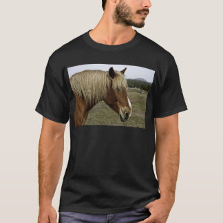 Golden horse T-Shirt