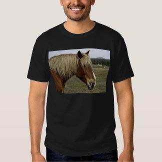 Golden horse t shirts