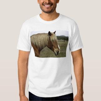Golden horse tee shirt