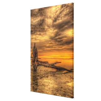 Golden Hour Driftwood Canvas Print