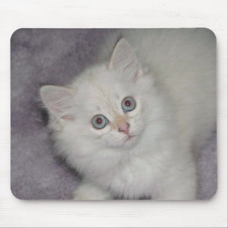 Golden Kitten Mousepad