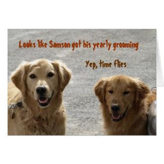 Golden Lab Friends Birthday Greeting Card